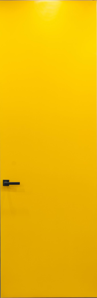 Двері прихованого монтажу фарбовані 55 профіль